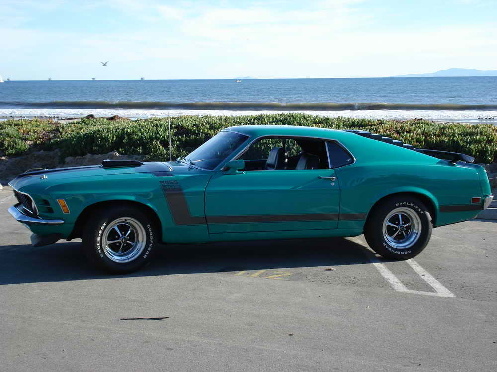 Boss 302 Mustang Picture