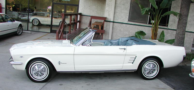 Picture 1966 mustang
